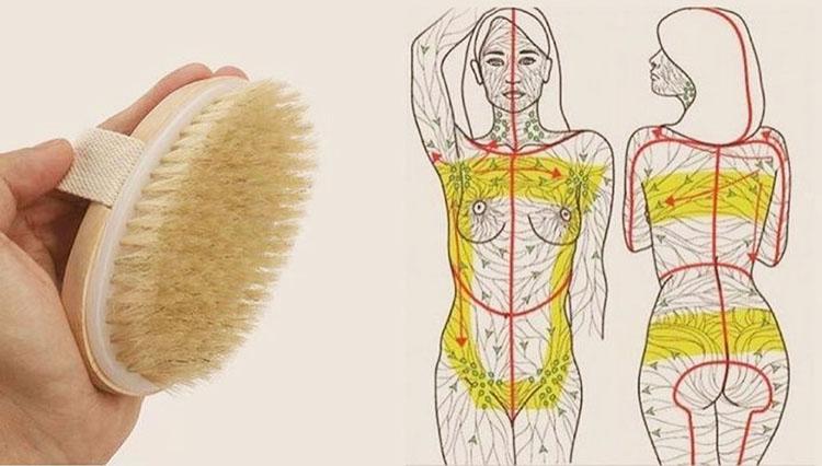 массаж сухой щеткой от целюлита