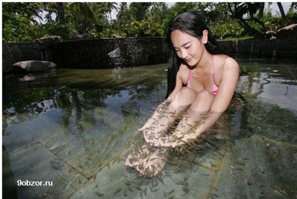 массаж рыбками польза для ног
