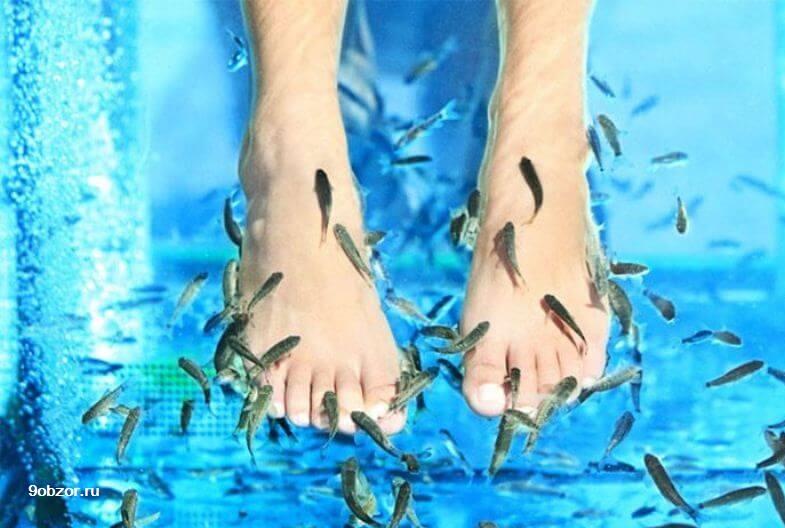 массаж рыбками